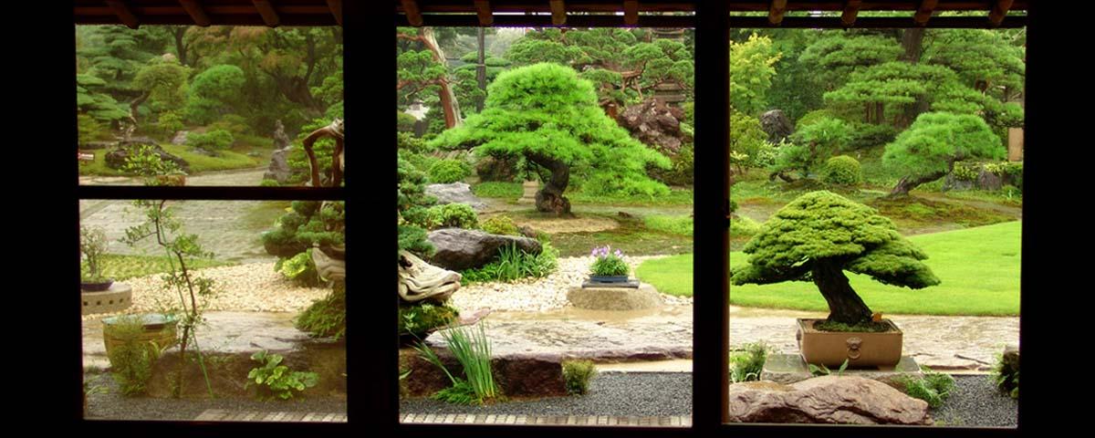 Jardim bonsai japonês