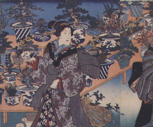 IV Ka História do bonsai japonês
