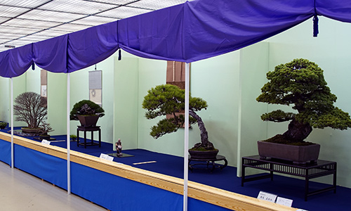 Exposição Taikan-ten 2018